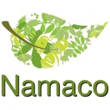 namaco-113934.jpeg