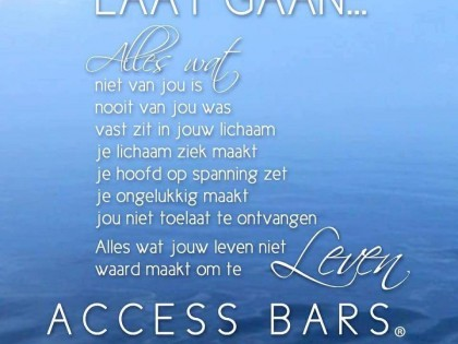 Wat is Access Bars®